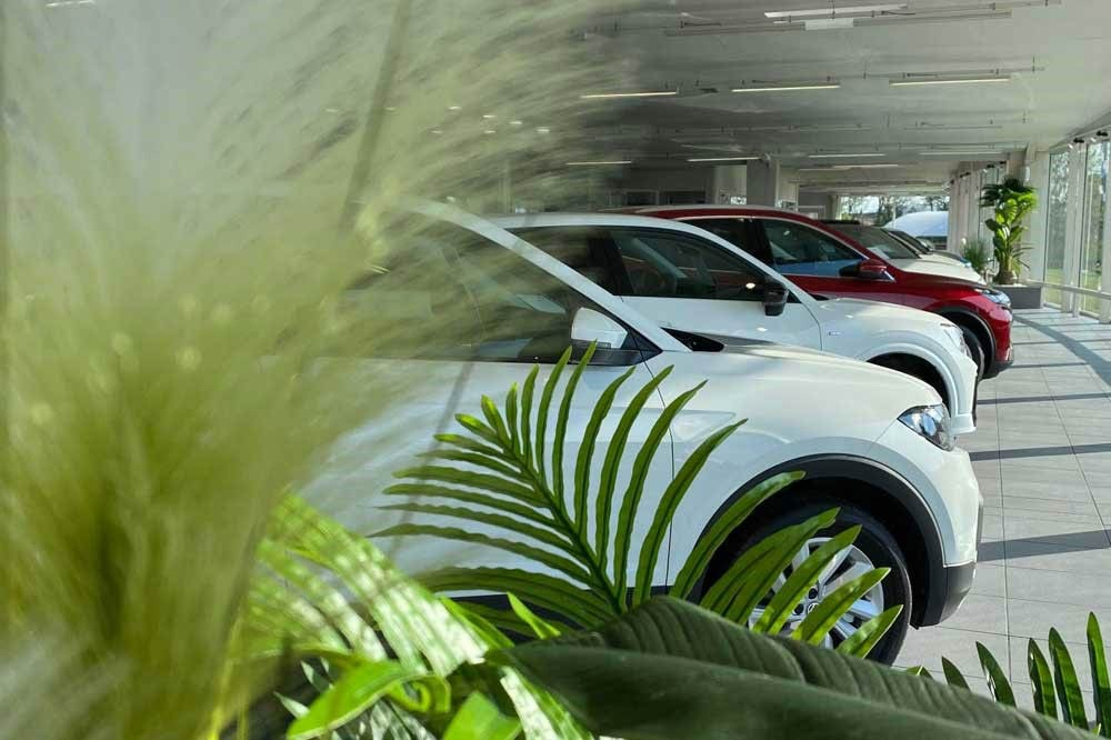 ORA7 meilleur distributeur automobile 2019