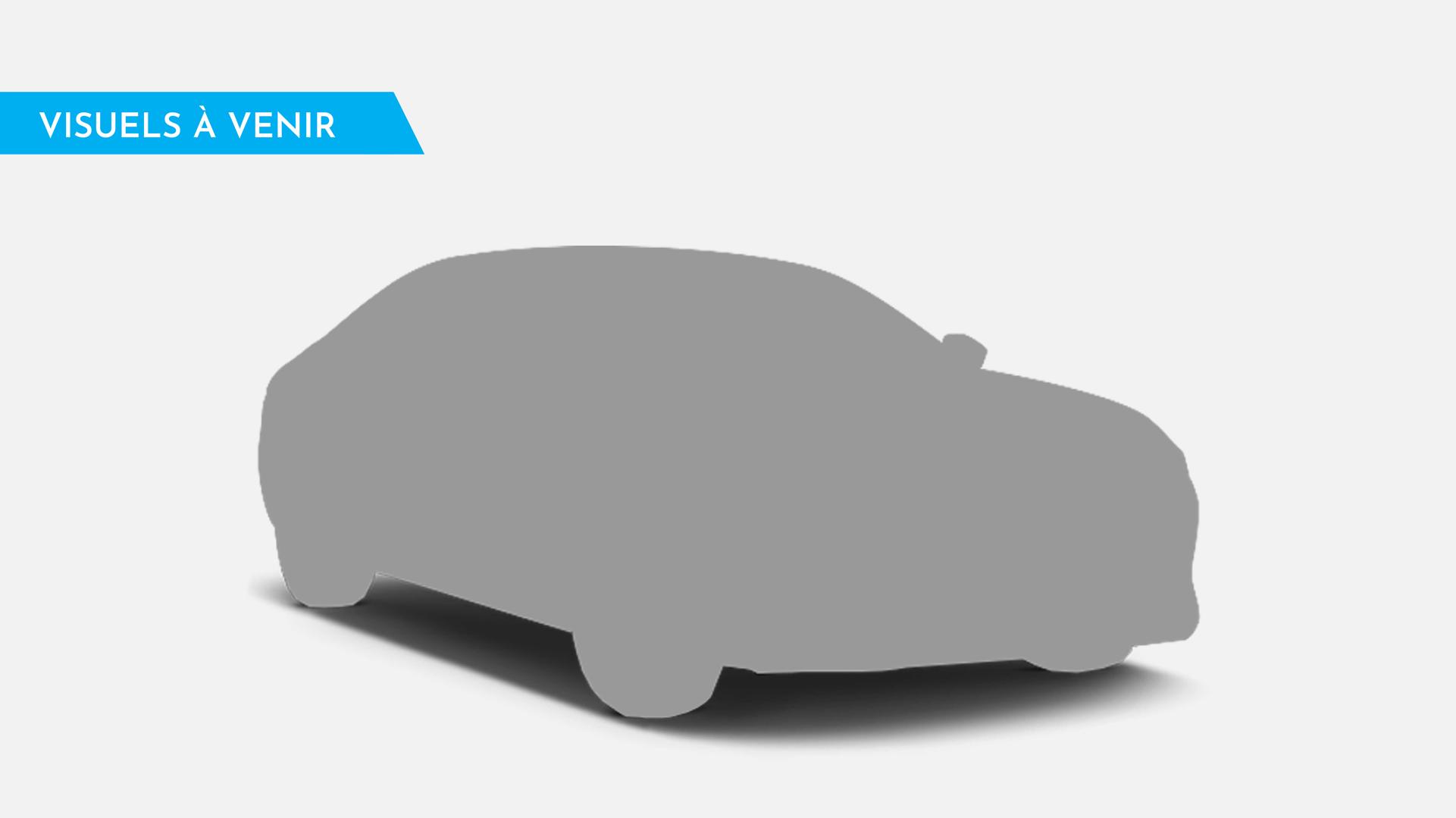 Renault Twingo 3 0.9 Tce 90ch Energy Intens Occasion à Lyon Sérézin ...